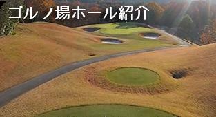 ゴルフ場ホール紹介